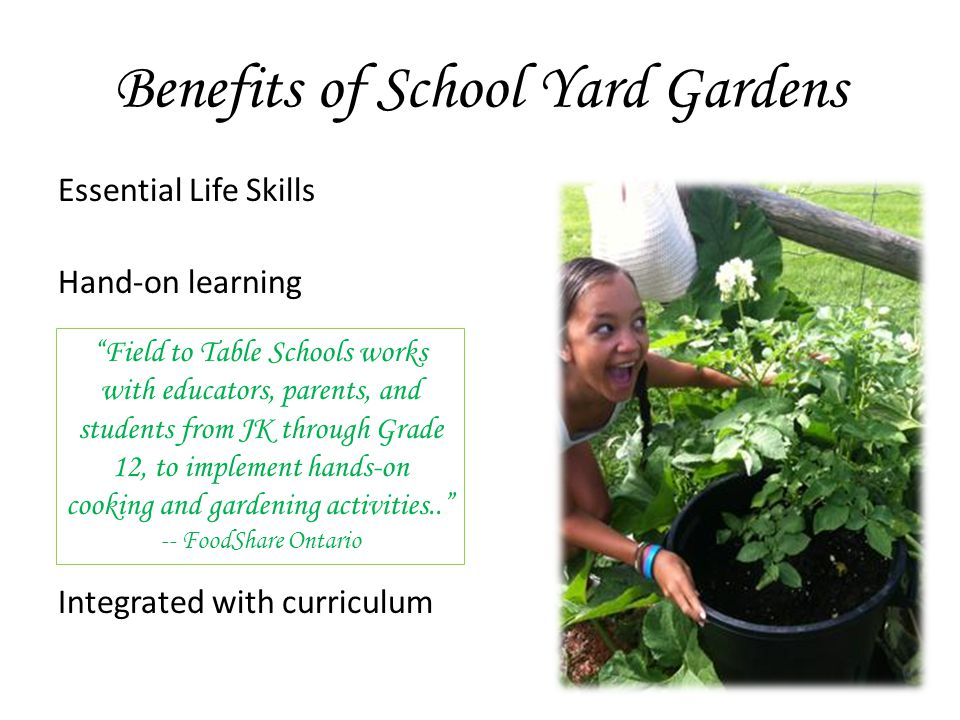 Benefits of School Yard Gardens Essential Life Skills Hand-on learning Integrated with curriculum Field to Table Schools works with educators, parents, and students from JK through Grade 12, to implement hands-on cooking and gardening activities.. -- FoodShare Ontario