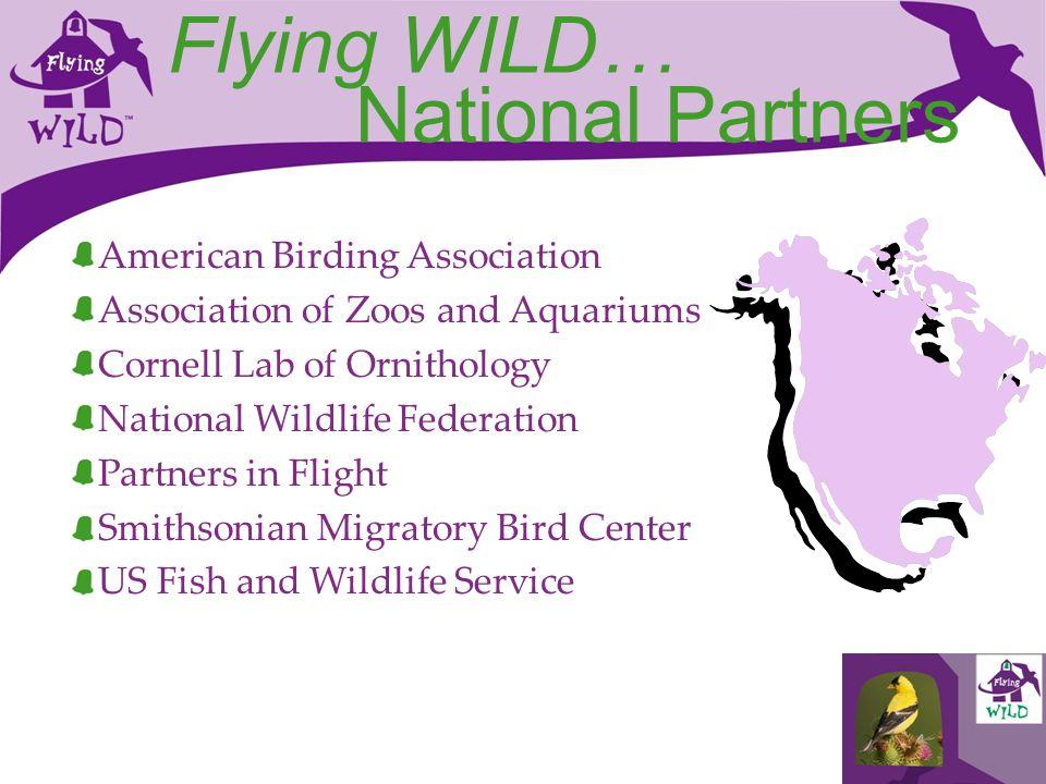 Flying WILD… National Partners American Birding Association Association of Zoos and Aquariums Cornell Lab of Ornithology National Wildlife Federation