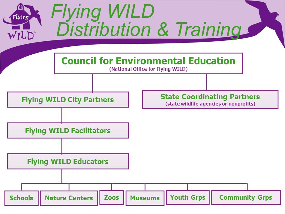 Flying WILD Network Local, State National Organizations Bird Groups Audubon Chapters & Centers Zoos & Aquariums Businesses Conservation Organizations State Wildlife Agencies Project WILD Coordinators School Districts