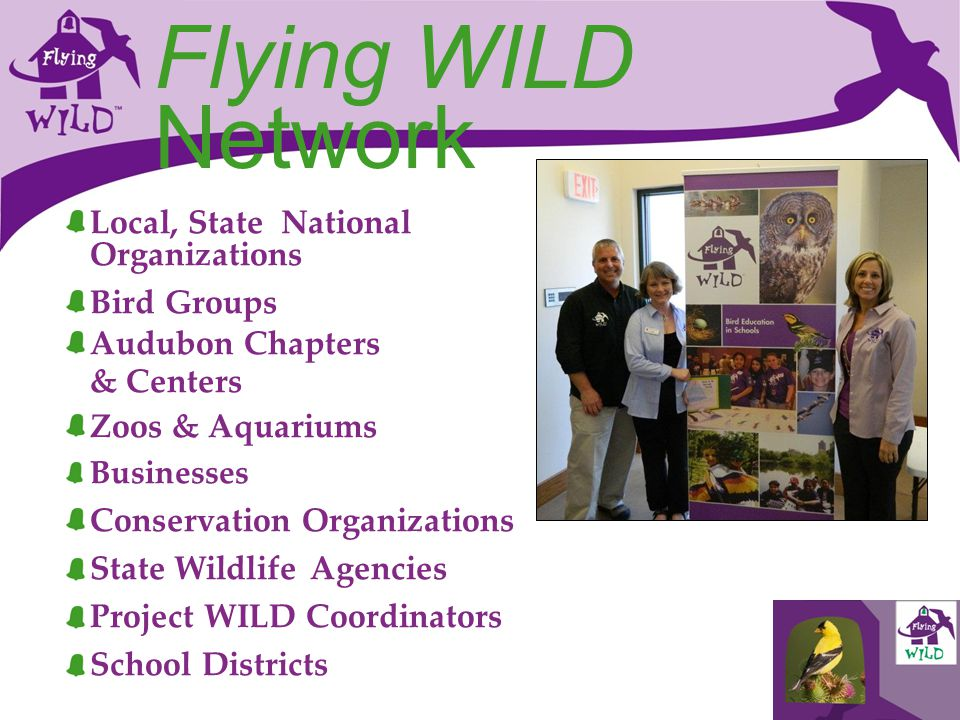 Flying WILD Network Local, State National Organizations Bird Groups Audubon Chapters & Centers Zoos & Aquariums Businesses Conservation Organizations