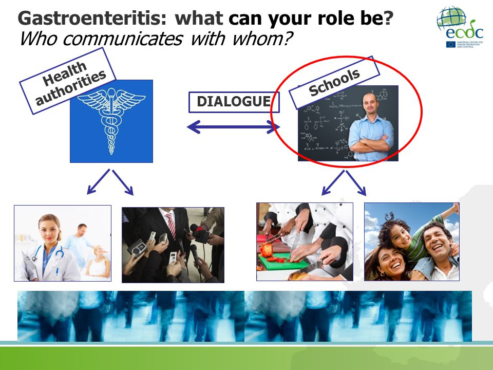 Gastroenteritis: what can your role be.Who communicates with whom.