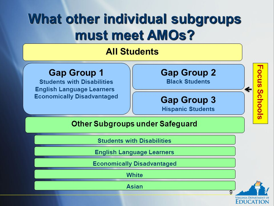What other individual subgroups must meet AMOs.