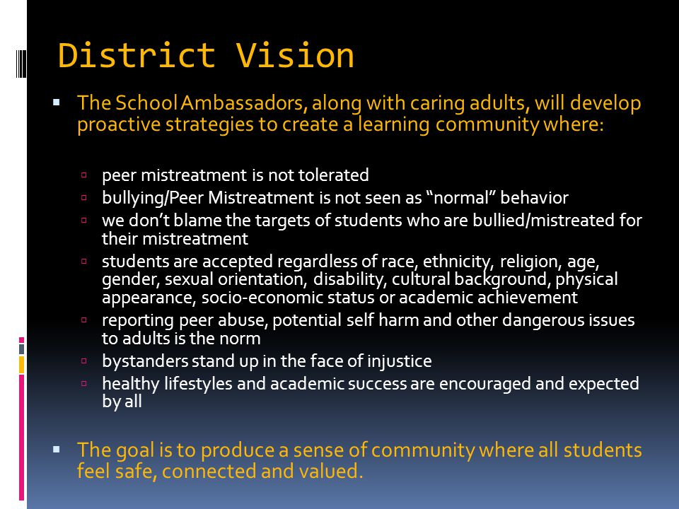 District Vision  The School Ambassadors, along with caring adults, will develop proactive strategies to create a learning community where:  peer mis