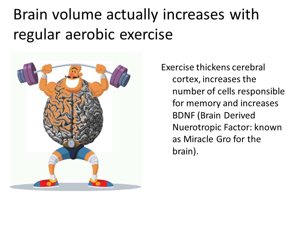 Brain volume actually increases with regular aerobic exercise Exercise thickens cerebral cortex, increases the number of cells responsible for memory and increases BDNF (Brain Derived Nuerotropic Factor: known as Miracle Gro for the brain).