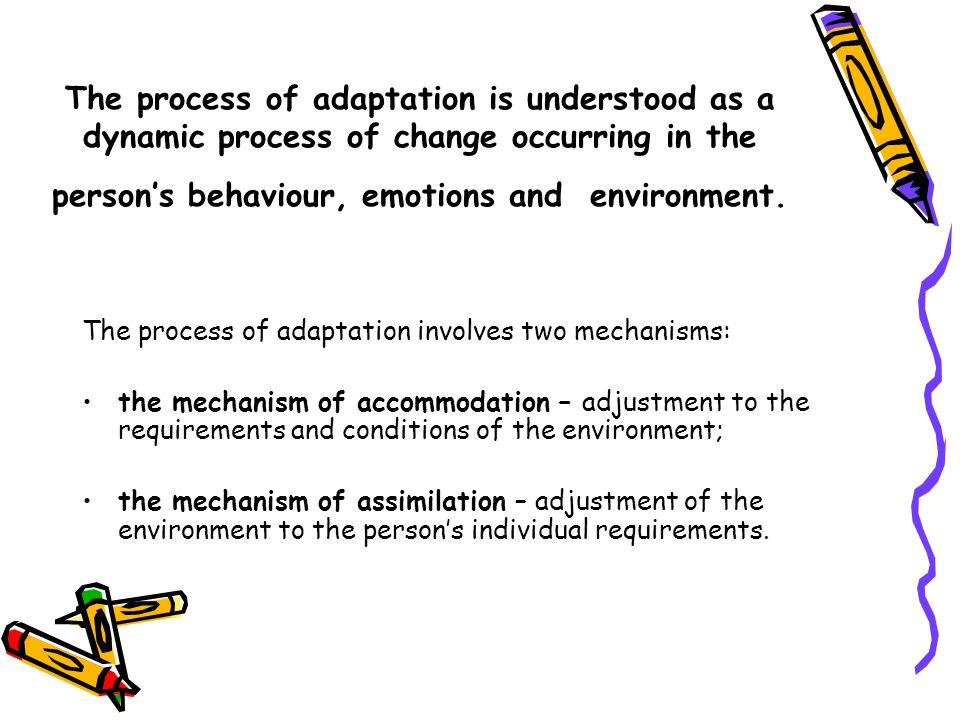 The process of adaptation is understood as a dynamic process of change occurring in the person's behaviour, emotions and environment.