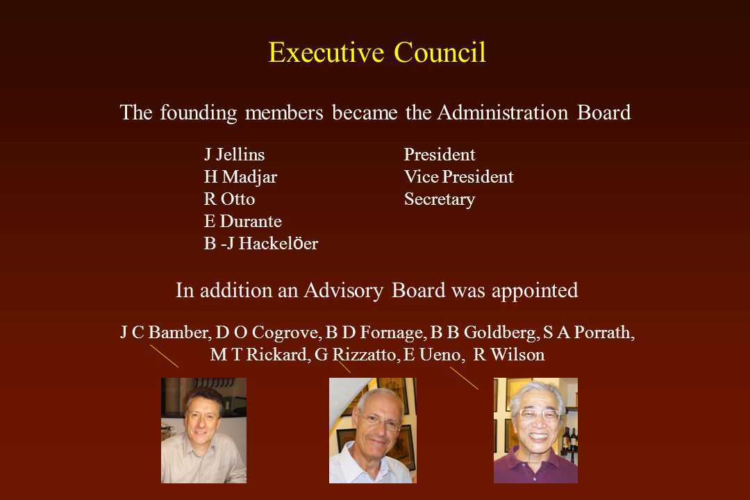 The founding members became the Administration Board J JellinsPresident H MadjarVice President R Otto Secretary E Durante B -J Hackel ö er In addition an Advisory Board was appointed J C Bamber, D O Cogrove, B D Fornage, B B Goldberg, S A Porrath, M T Rickard, G Rizzatto, E Ueno, R Wilson Executive Council