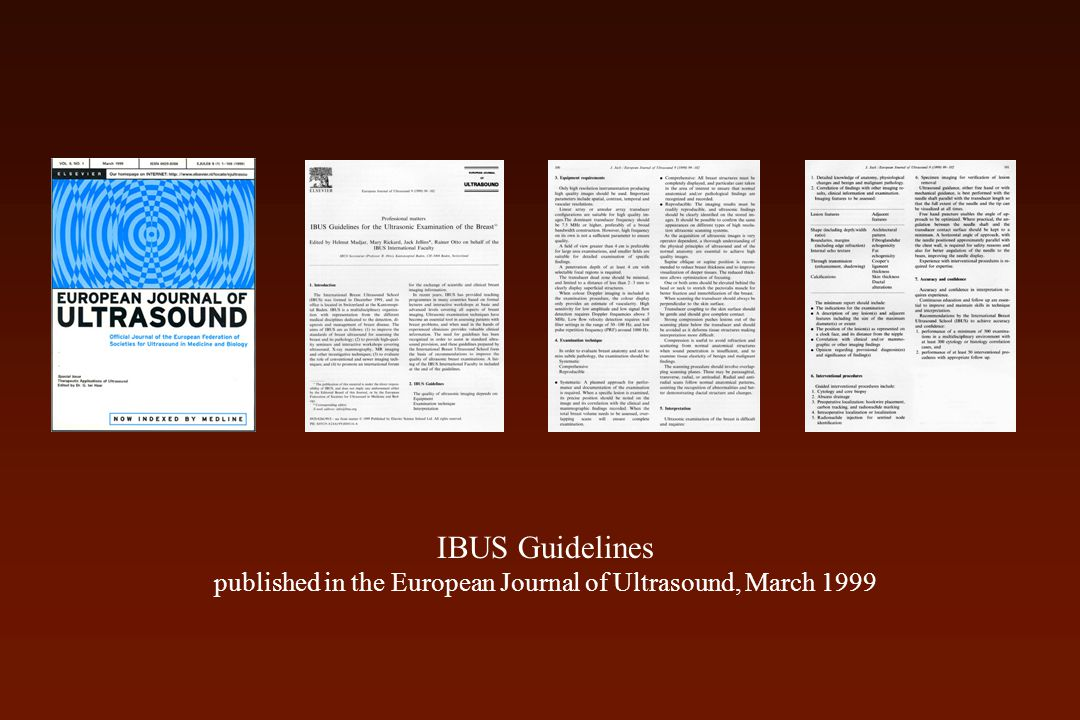IBUS Guidelines published in the European Journal of Ultrasound, March 1999
