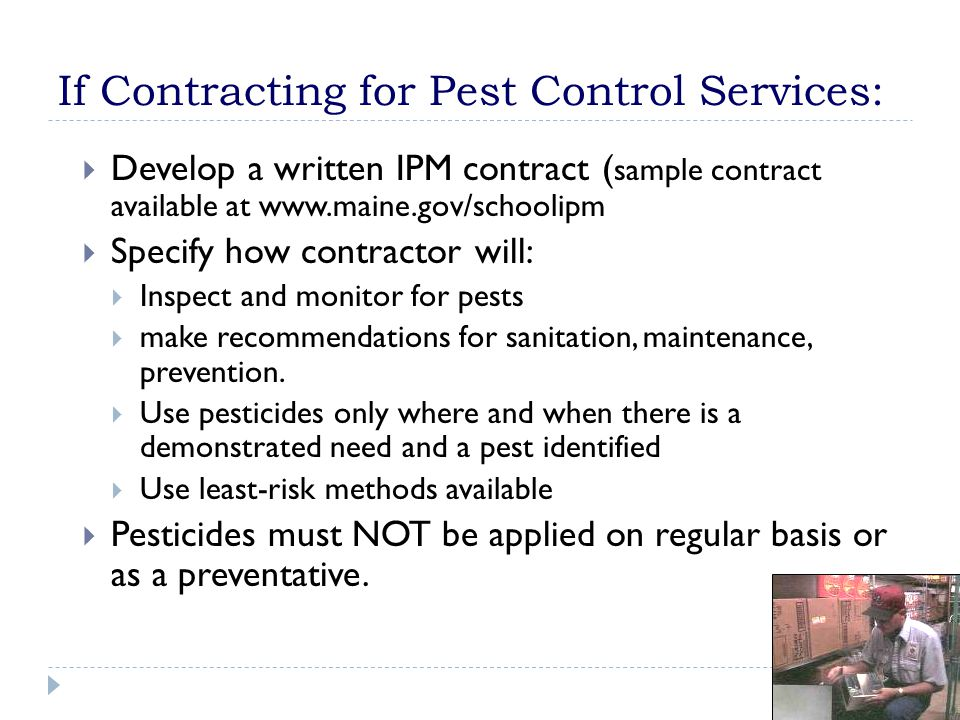 If Contracting for Pest Control Services:  Develop a written IPM contract ( sample contract available at www.maine.gov/schoolipm  Specify how contra