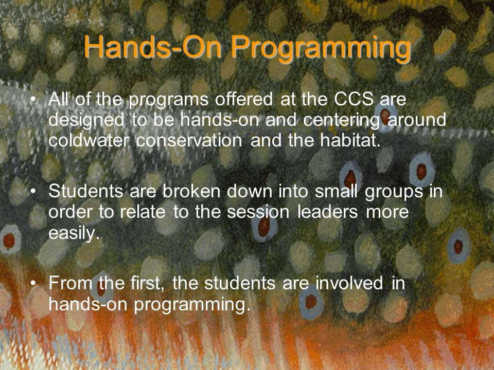 Hands-On Programming All of the programs offered at the CCS are designed to be hands-on and centering around coldwater conservation and the habitat. S