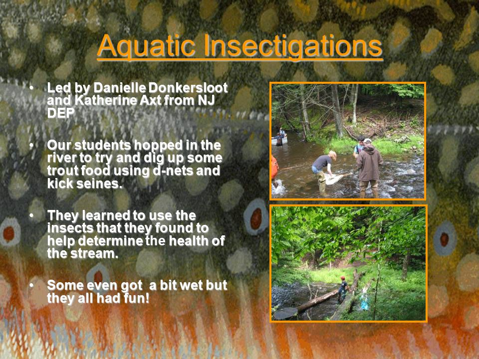 Aquatic Insectigations Led by Danielle Donkersloot and Katherine Axt from NJ DEPLed by Danielle Donkersloot and Katherine Axt from NJ DEP Our students