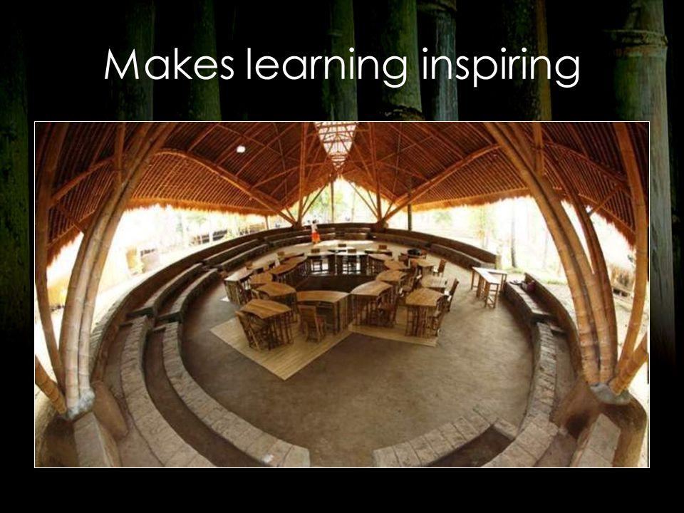 Makes learning inspiring