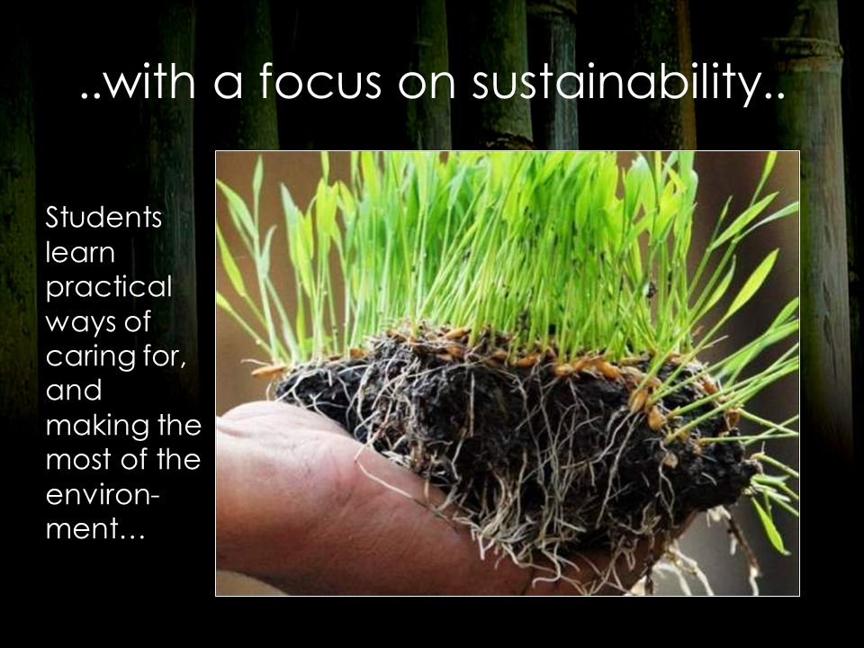 ..with a focus on sustainability..