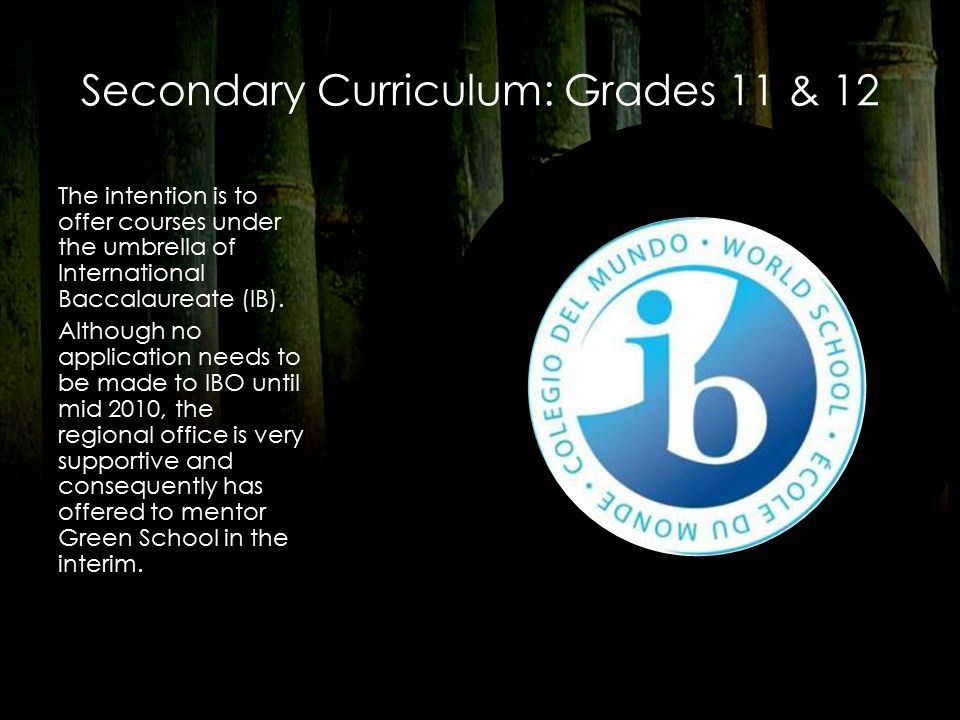 Secondary Curriculum: Grades 11 & 12 The intention is to offer courses under the umbrella of International Baccalaureate (IB).