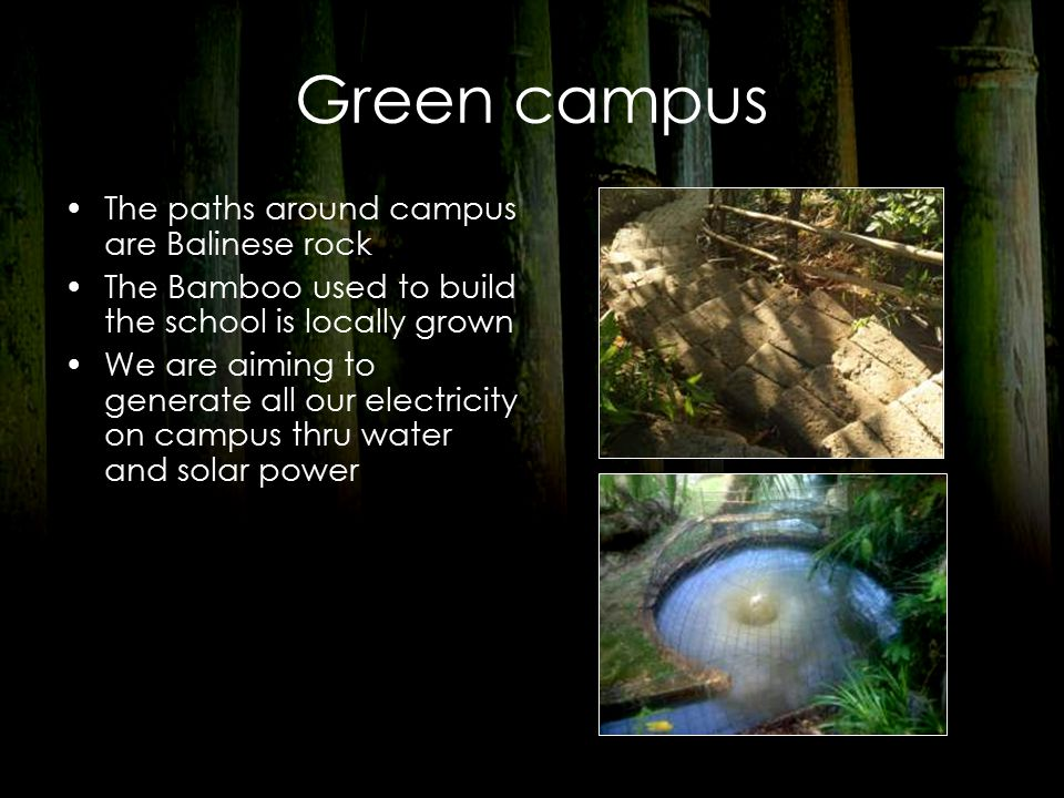 Green campus The paths around campus are Balinese rock The Bamboo used to build the school is locally grown We are aiming to generate all our electricity on campus thru water and solar power