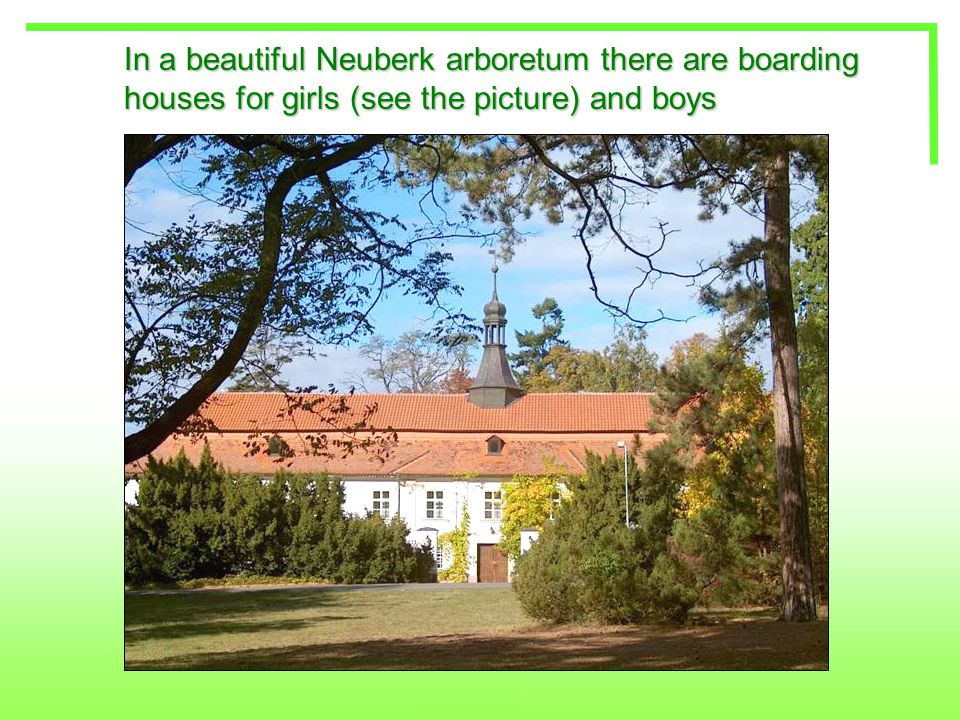 In a beautiful Neuberk arboretum there are boarding houses for girls (see the picture) and boys