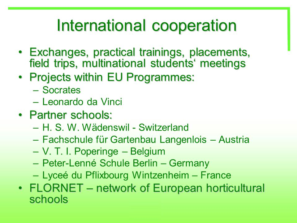 International cooperation Exchanges, practical trainings, placements, field trips, multinational students' meetingsExchanges, practical trainings, placements, field trips, multinational students' meetings Projects within EU Programmes:Projects within EU Programmes: –Socrates –Leonardo da Vinci Partner schools:Partner schools: –H.
