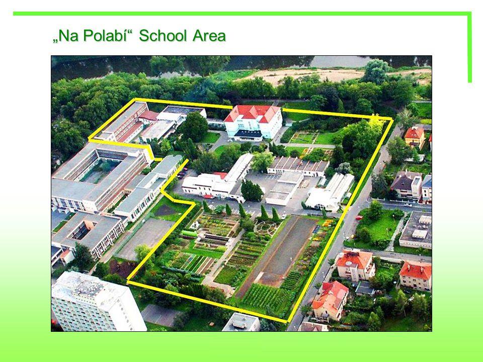 """Na Polabí"" School Area"