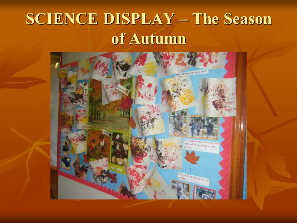 SCIENCE DISPLAY – The Season of Autumn