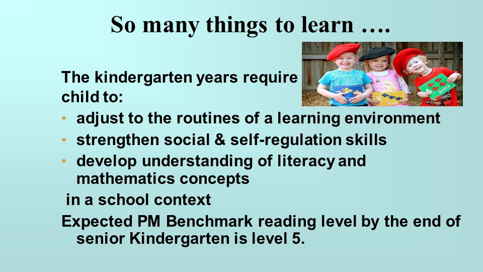 So many things to learn …. The kindergarten years require the child to: adjust to the routines of a learning environment strengthen social & self-regu
