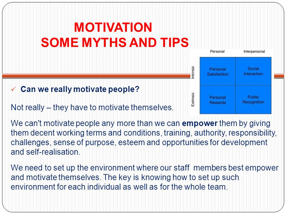 MOTIVATION SOME MYTHS AND TIPS Can we really motivate people.