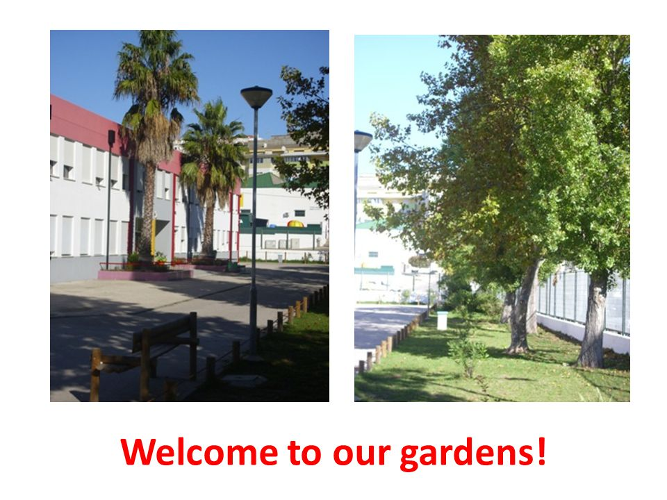 Welcome to our gardens!