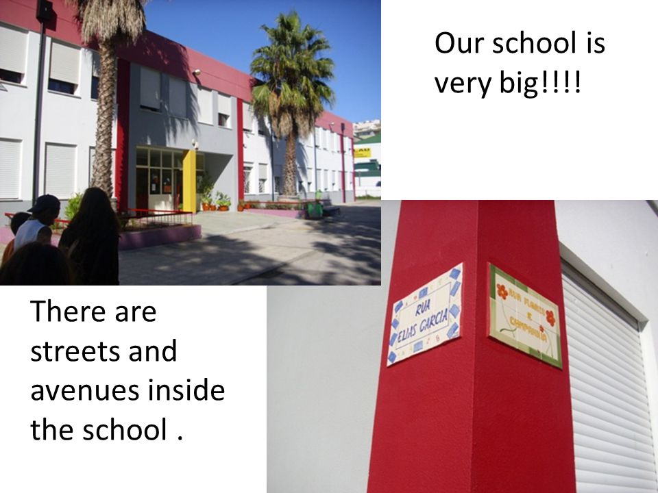 Our school is very big!!!! There are streets and avenues inside the school.