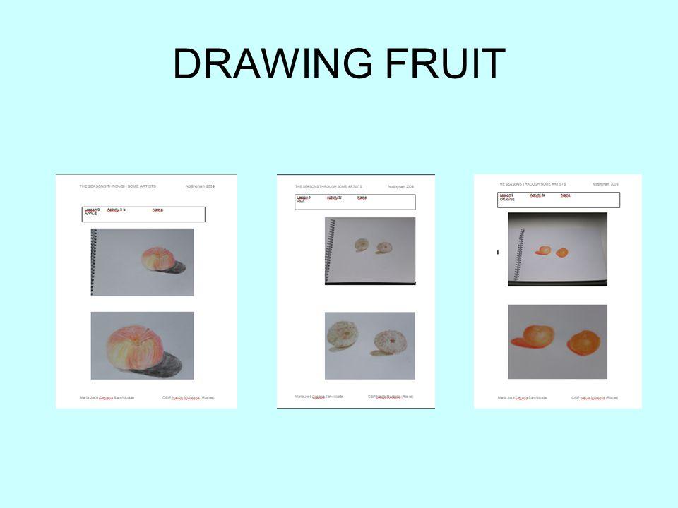 DRAWING FRUIT