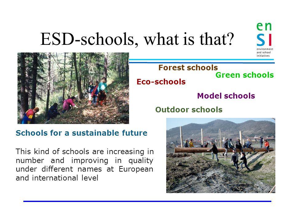 Quality Criteria for ESD- schools Michela Mayer Finn Mogensen