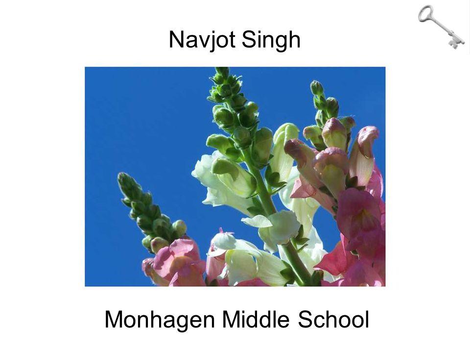 Navjot Singh Monhagen Middle School