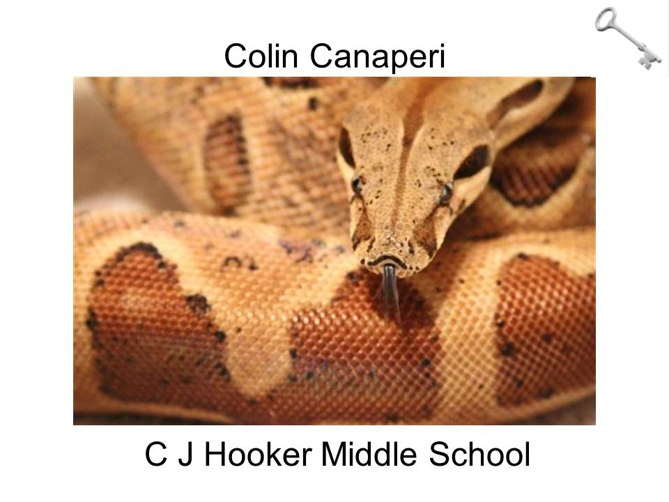 Colin Canaperi C J Hooker Middle School
