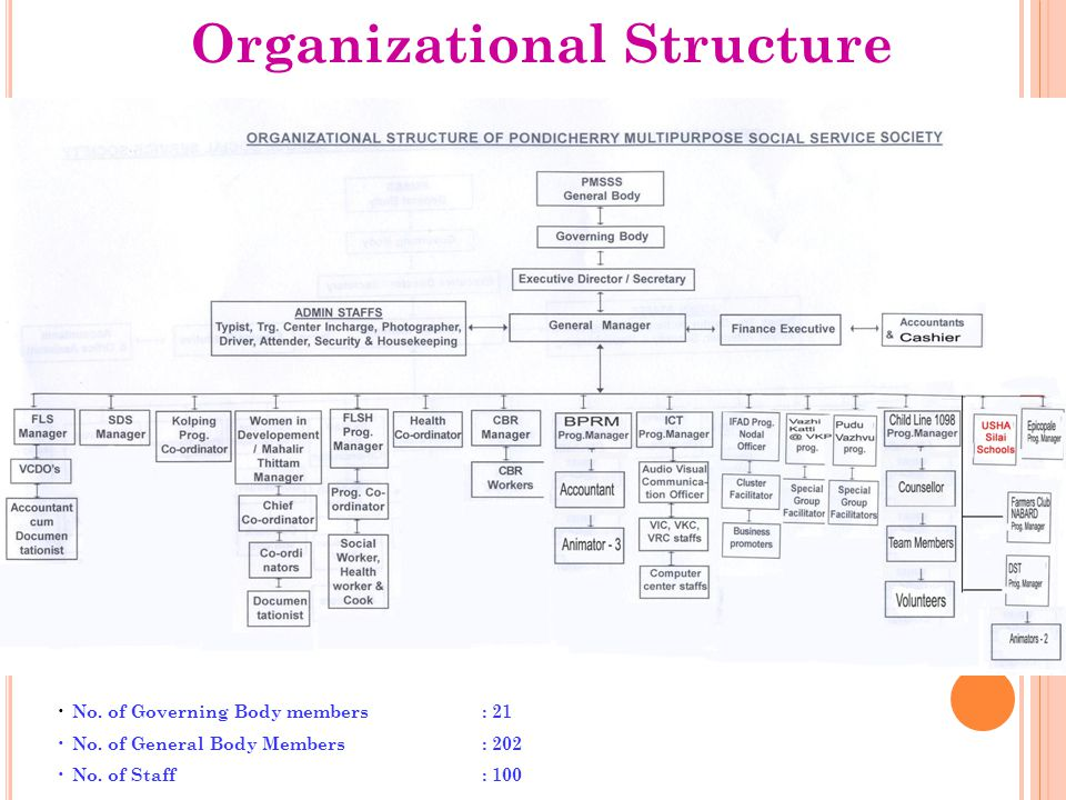 Organizational Structure No. of Governing Body members : 21 No. of General Body Members : 202 No. of Staff : 100