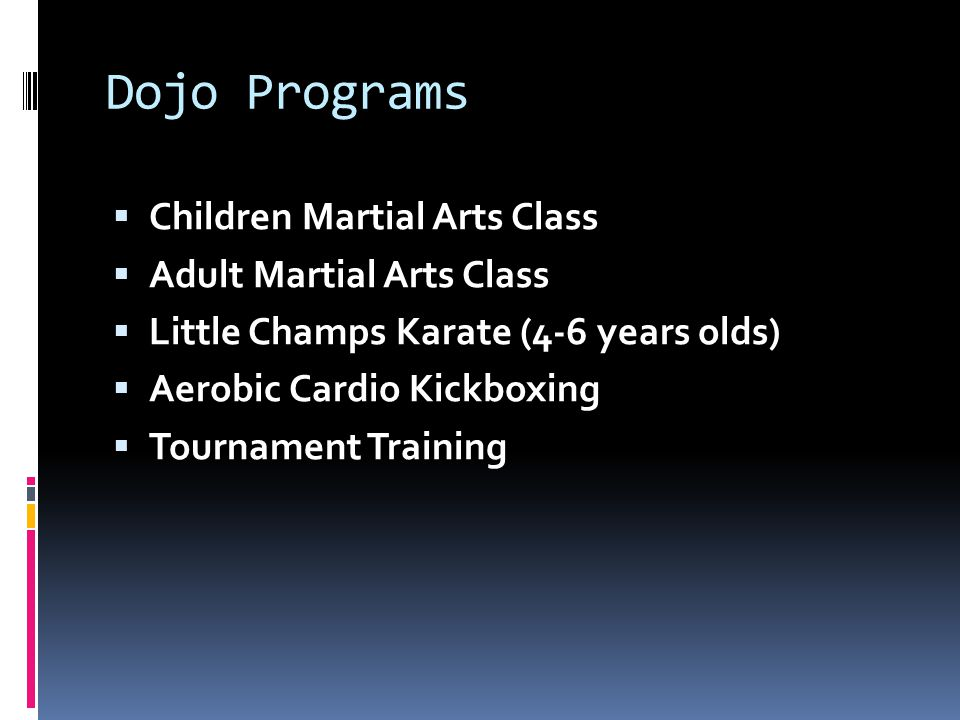 Dojo Programs  Children Martial Arts Class  Adult Martial Arts Class  Little Champs Karate (4-6 years olds)  Aerobic Cardio Kickboxing  Tournament Training