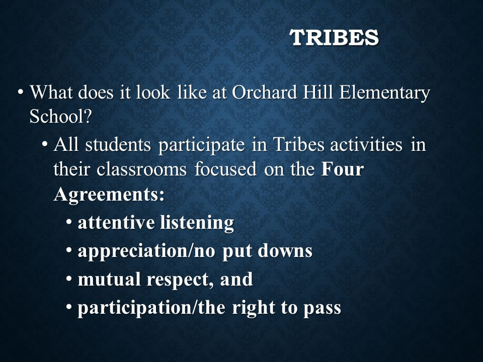 TRIBES What does it look like at Orchard Hill Elementary School? What does it look like at Orchard Hill Elementary School? All students participate in