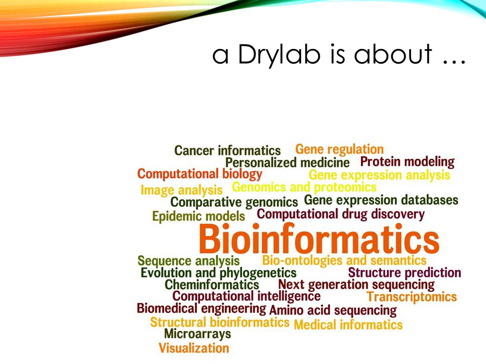 a Drylab is about …