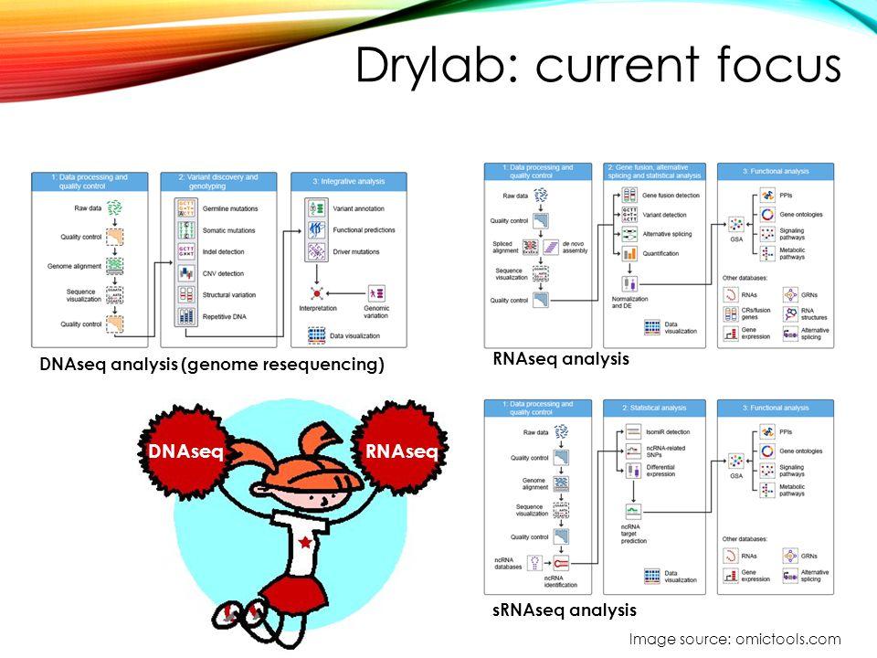 Drylab: current focus DNAseqRNAseq DNAseq analysis (genome resequencing) RNAseq analysis sRNAseq analysis Image source: omictools.com