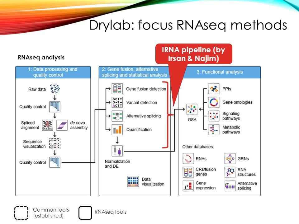 RNAseq analysis IRNA pipeline (by Irsan & Najim) Common tools (established) RNAseq tools Drylab: focus RNAseq methods
