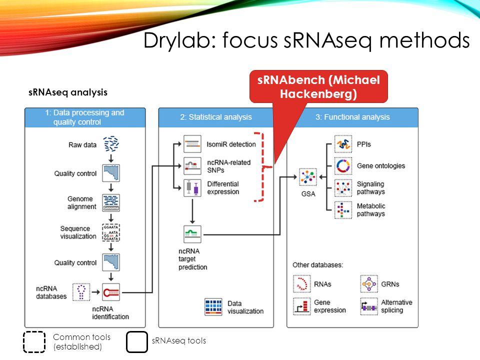 sRNAseq analysis sRNAbench (Michael Hackenberg) Common tools (established) sRNAseq tools Drylab: focus sRNAseq methods