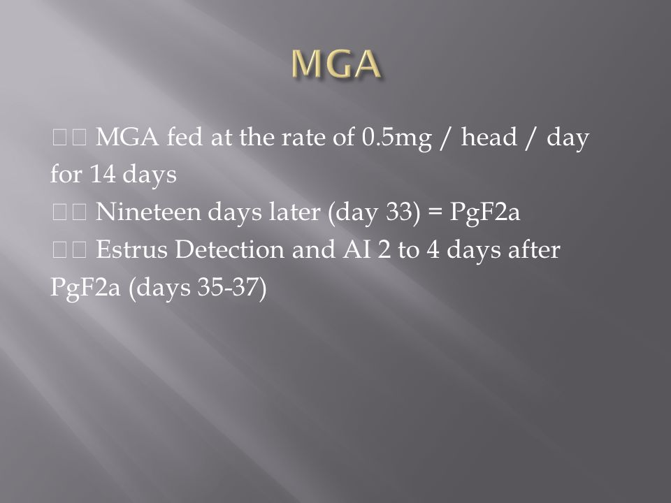 MGA fed at the rate of 0.5mg / head / day for 14 days Nineteen days later (day 33) = PgF2a Estrus Detection and AI 2 to 4 days after PgF2a (days 35-37