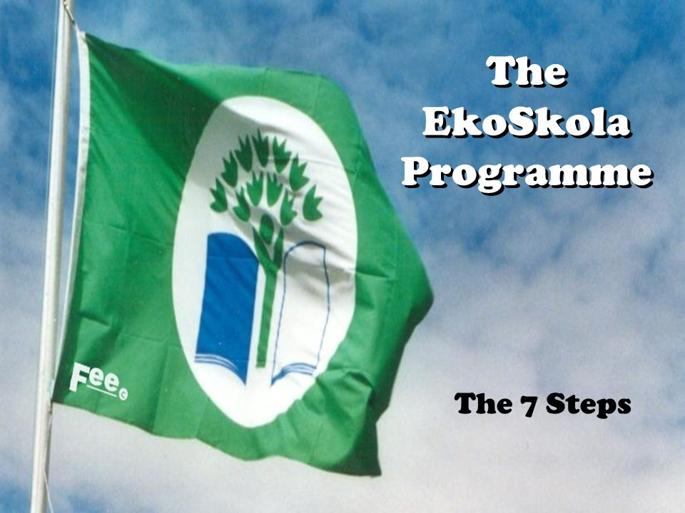 The EkoSkola Programme The 7 Steps