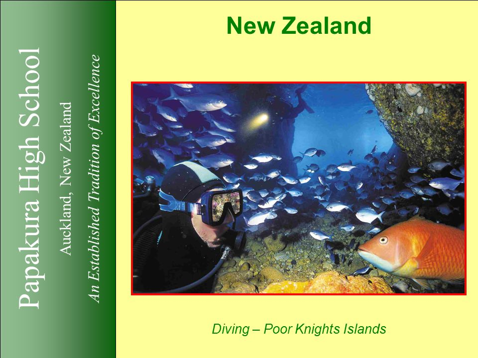 Papakura High School Auckland, New Zealand An Established Tradition of Excellence New Zealand Diving – Poor Knights Islands