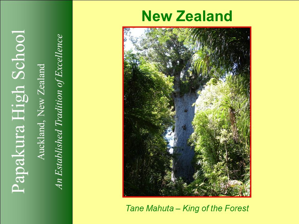 Papakura High School Auckland, New Zealand An Established Tradition of Excellence New Zealand Tane Mahuta – King of the Forest