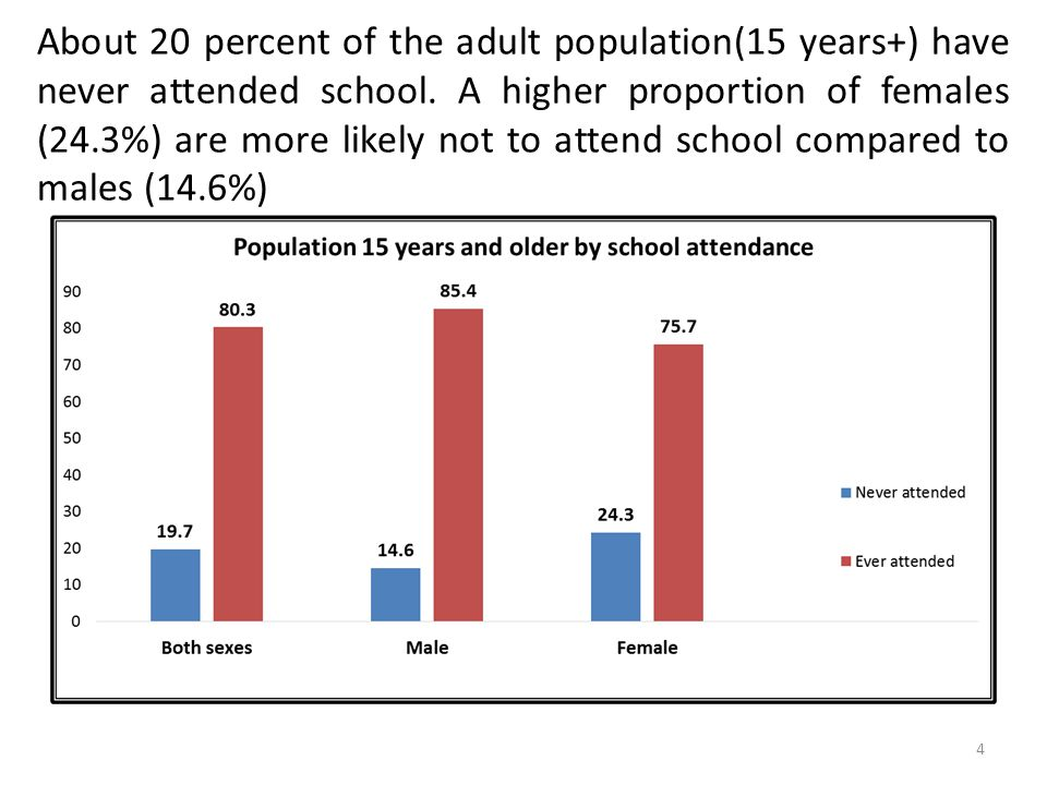 About 20 percent of the adult population(15 years+) have never attended school.