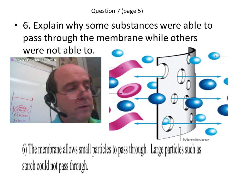 Question 7 (page 5) 6. Explain why some substances were able to pass through the membrane while others were not able to.