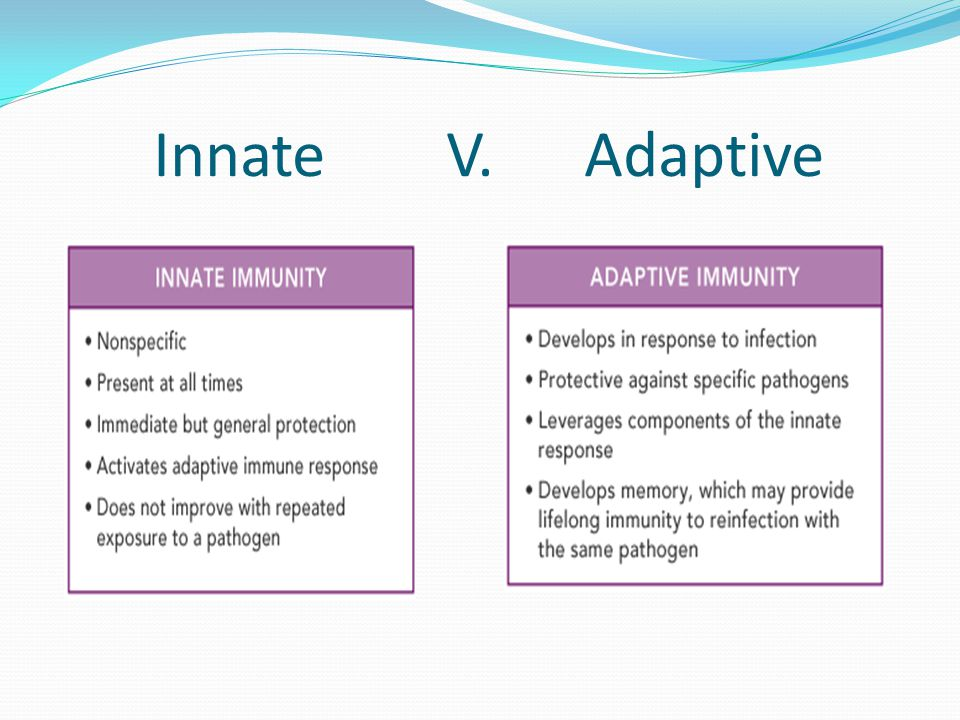 Innate V. Adaptive
