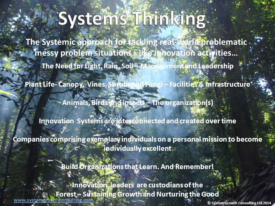 The Systemic approach for tackling real-world problematic messy problem situations - like innovation activities… The Need for Light, Rain, Soil – Mana