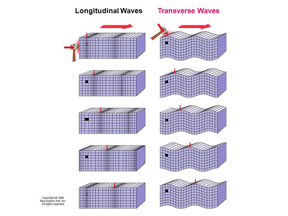 Longitudinal WavesTransverse Waves