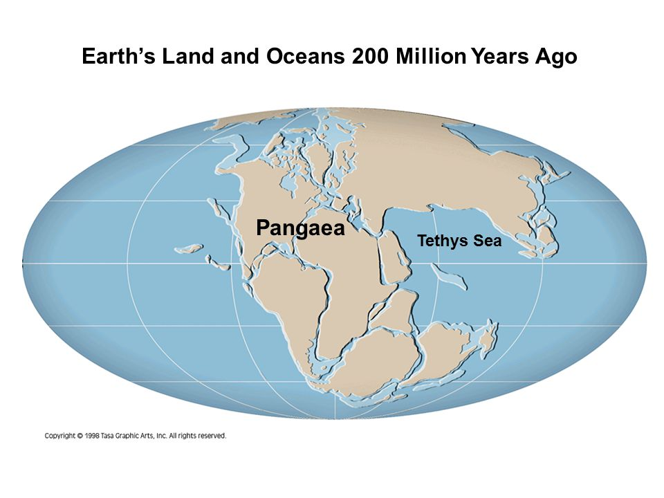 Pangaea Earth's Land and Oceans 200 Million Years Ago Tethys Sea