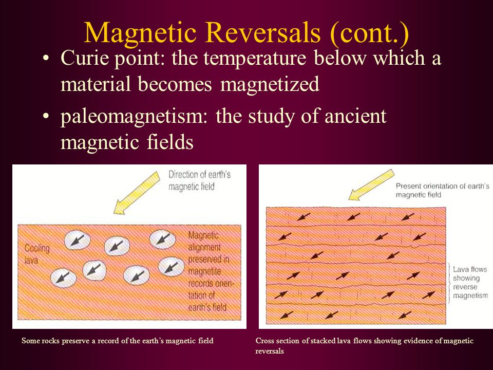 Magnetic Reversals (cont.) Curie point: the temperature below which a material becomes magnetized paleomagnetism: the study of ancient magnetic fields