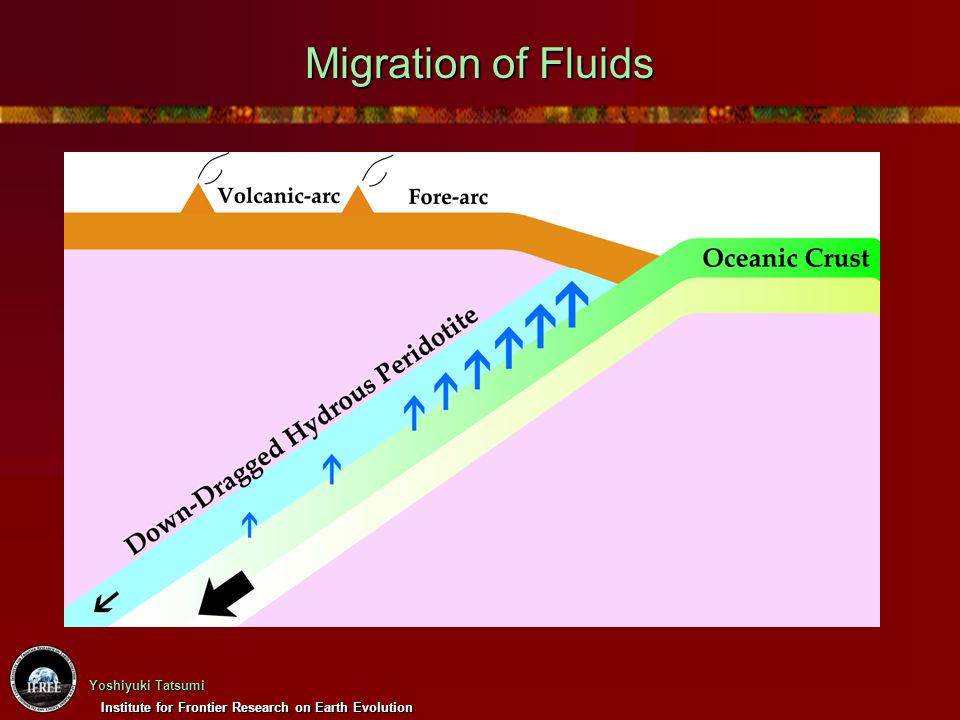 Institute for Frontier Research on Earth Evolution Yoshiyuki Tatsumi Migration of Fluids