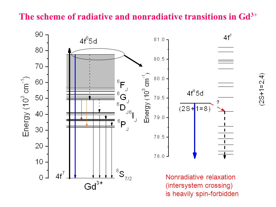 The scheme of radiative and nonradiative transitions in Gd 3+ Nonradiative relaxation (intersystem crossing) is heavily spin-forbidden